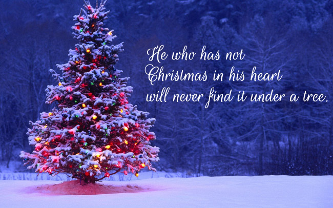 Quotes Christmas Enchanting Christmas Quotes  Christmas Day Quotes Christmasday