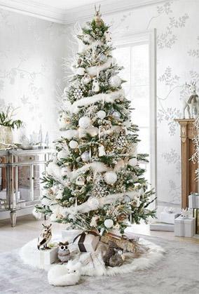 Christmas Tree Colors.Colors Of Christmas Day A Christmas Day Colors Coat Of
